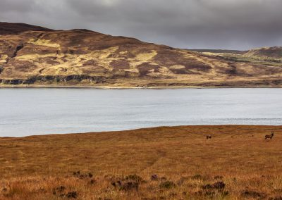 Isle of Jura | Islay View