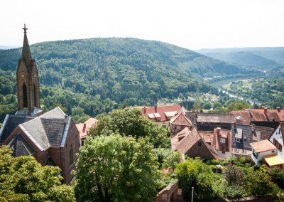 Blick von der Burg Dilsberg