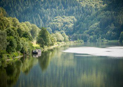 Neckar bei Eberbach
